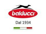 Incaltaminte copii Balducci